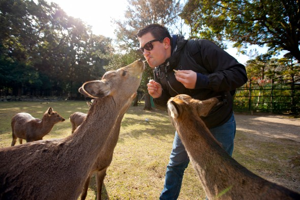 Image of Todd Spoth feeding deer in Nara, Japan